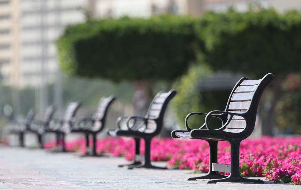 Empty park benches are shown in this photo.