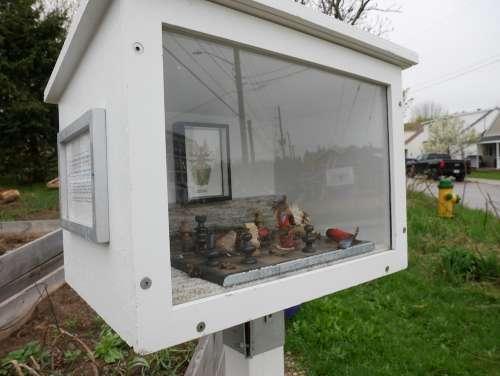 Box art at community garden
